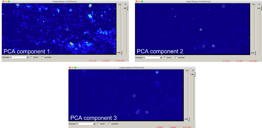 PCA_components_with_markers.png