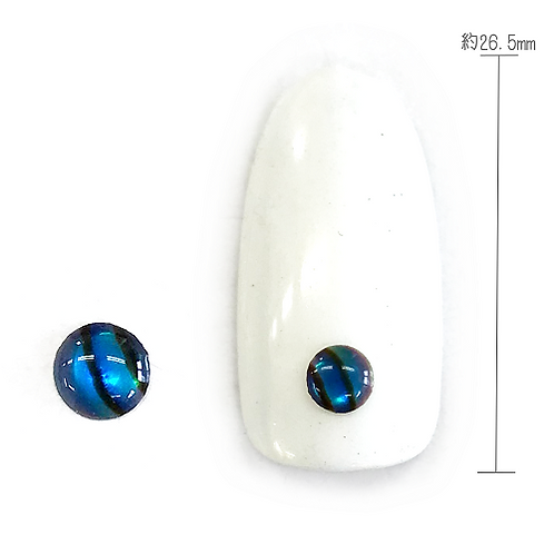Natural Shell 1-18 (Round L×Blue)