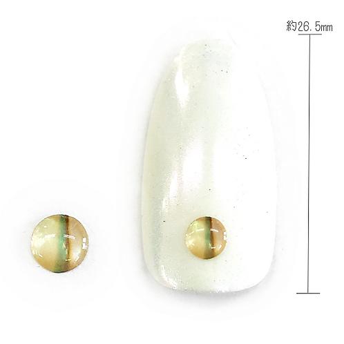 Natural Shell 1-17 (Round L×Natural)
