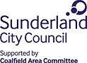 Coalfields Area Committee Sunderlad