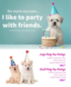 Dog_Party Package-min.jpg