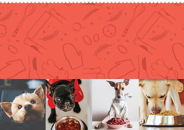 Dog Food Page Banner Mobile-min.jpg