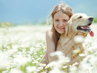 6 Signs Your Dog is Healthy