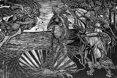 Venus reptiliana