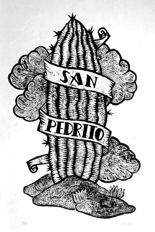Sann Pedrito