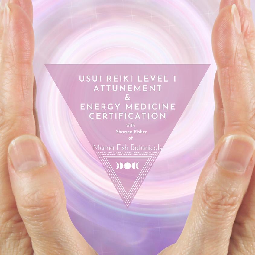 CLASS IS FULL- Usui Shiki Ryoho Reiki 1st degree Attunement & Energy Medicine Certification
