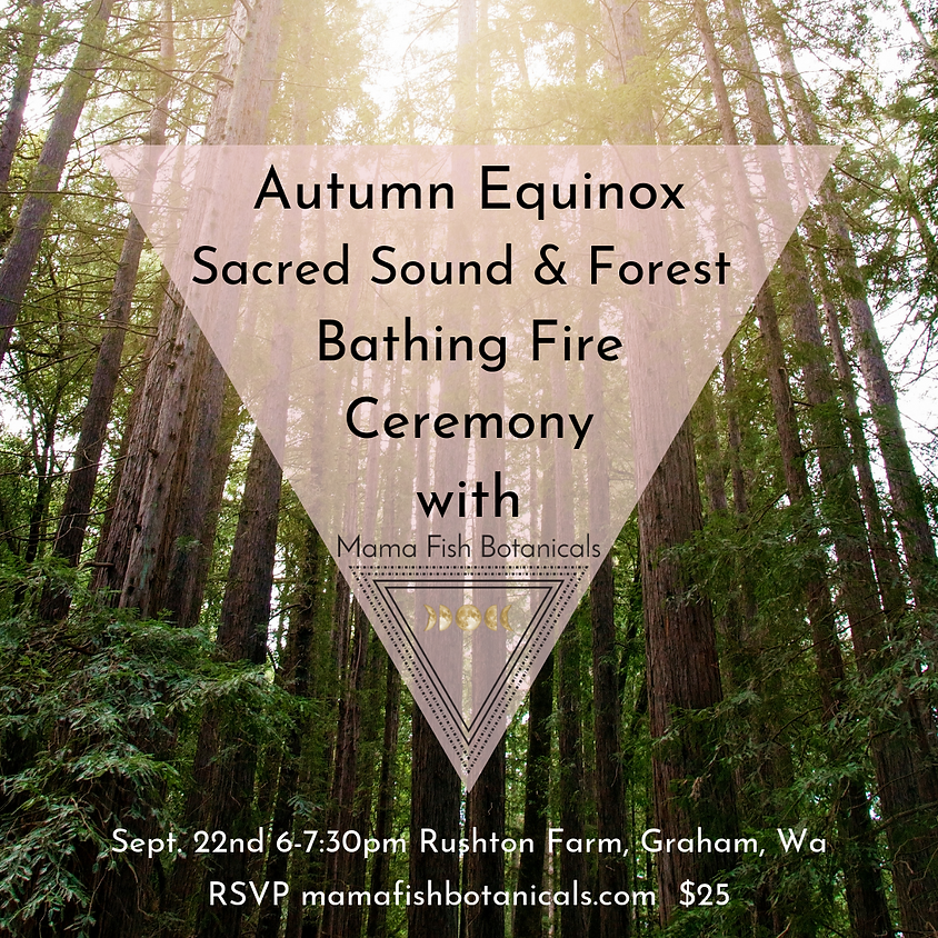 Autumn Equinox Sacred Sound & Forest Bathing Fire Ceremony