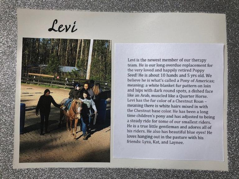 Levi's Story (1).jpg