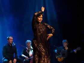 Cohen-og-flamenco-web.jpg