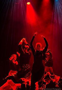 Flamenco-i-Moss.jpg