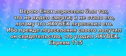 Скриншот 26-04-2019 133938.jpg