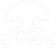 Thrive PT Logo - WHITE.png