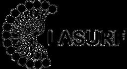 LASURF-logotipo-300x164.png