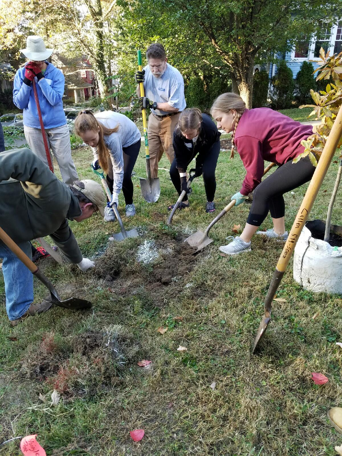 LCAN, AHS Students Planting Tree in Tyler Park, 2016.10.29