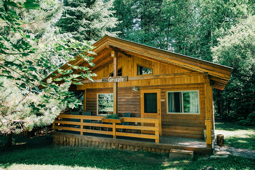 Grizzly Chalet at Hillside Lodge Banner