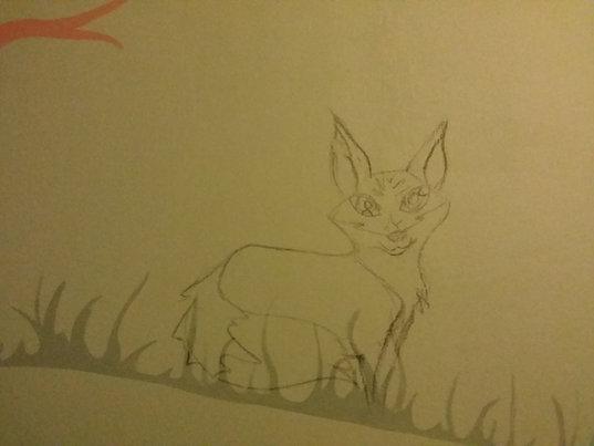 Fresque Murale La Forêt- Crayonné du Ren