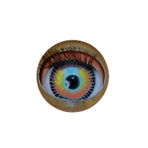 mon oeil gif_edited.png