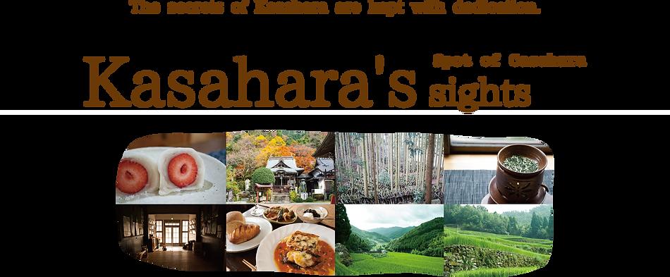 Kasahara's sights