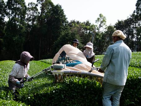 農作業応援隊