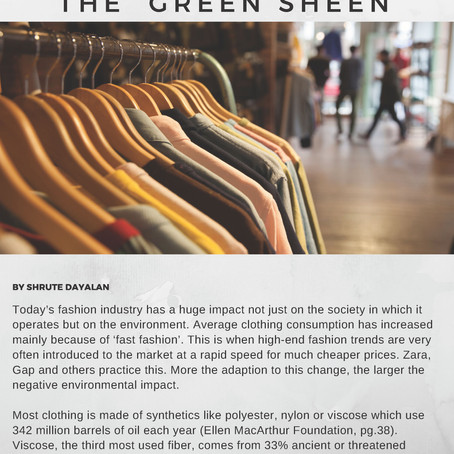 """The Truth Behind the """"Green Sheen"""""""