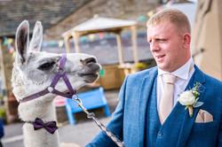 Bolton Wellbeing Farm Wedding Photo (55)