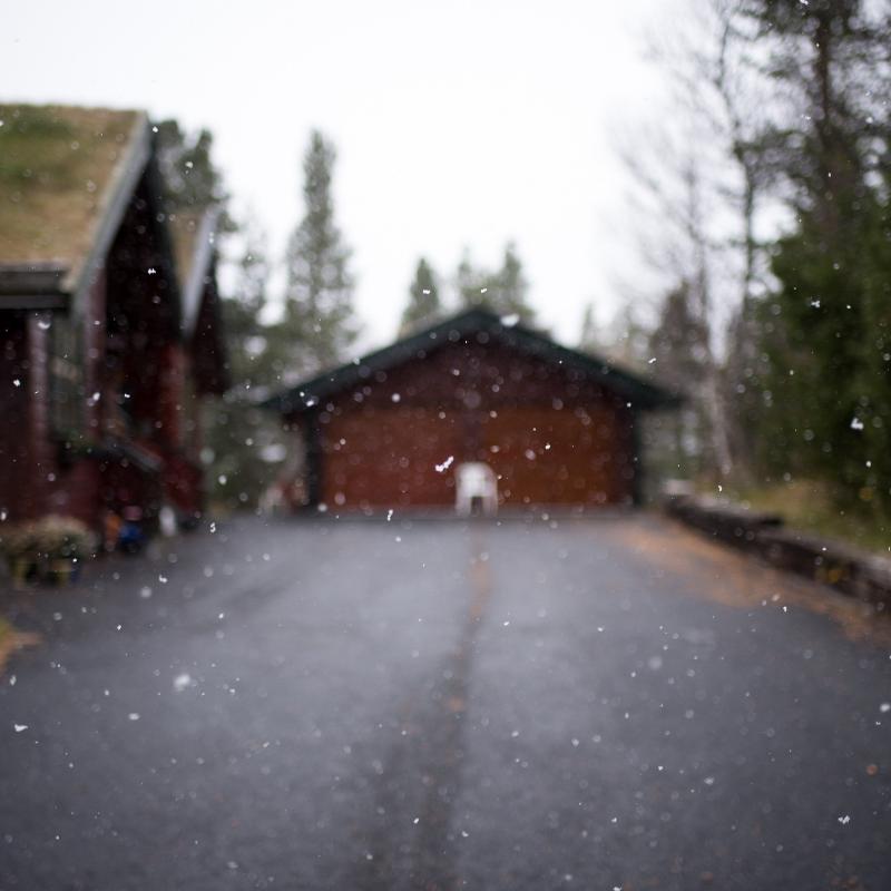 prepare your garage door for cold weather