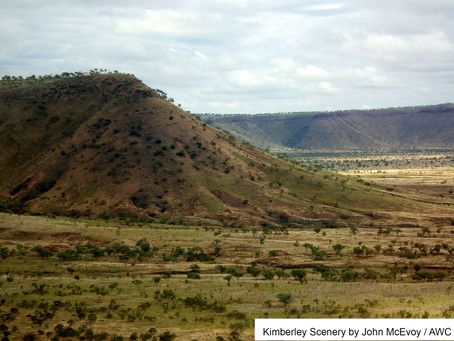 New Collaboration: Cattle, Land and Fire in the Kimberley