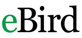 eBird.png