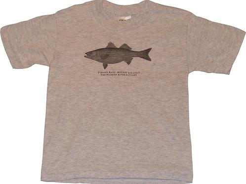 Youth Striper t-shirt