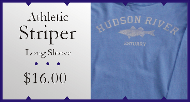 ASL_Athletic_Striper_LS.PNG