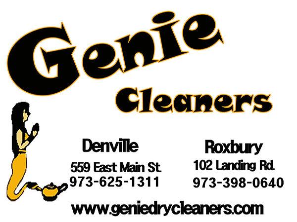 genie cleaners