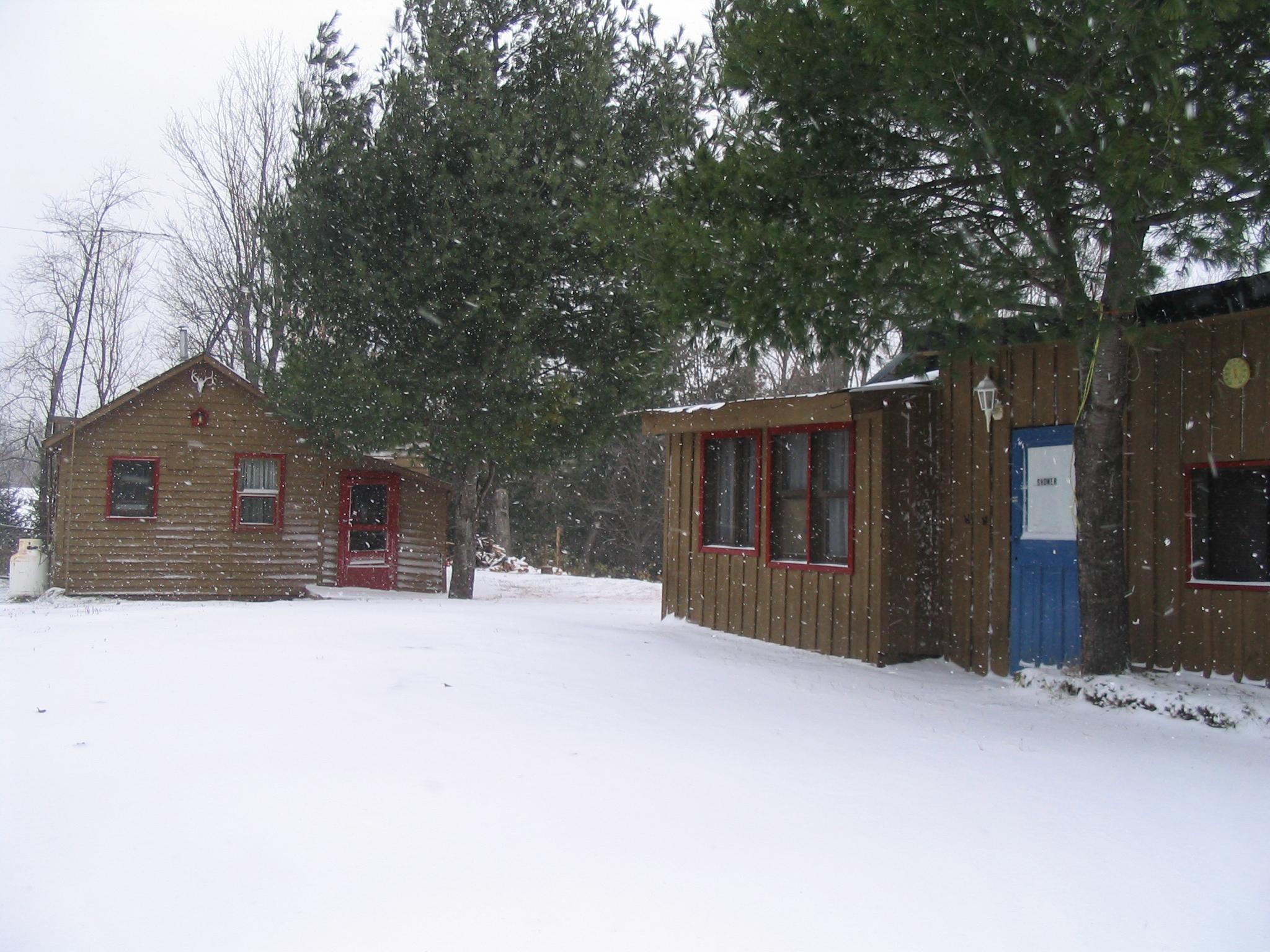 C1 & C2 in winter