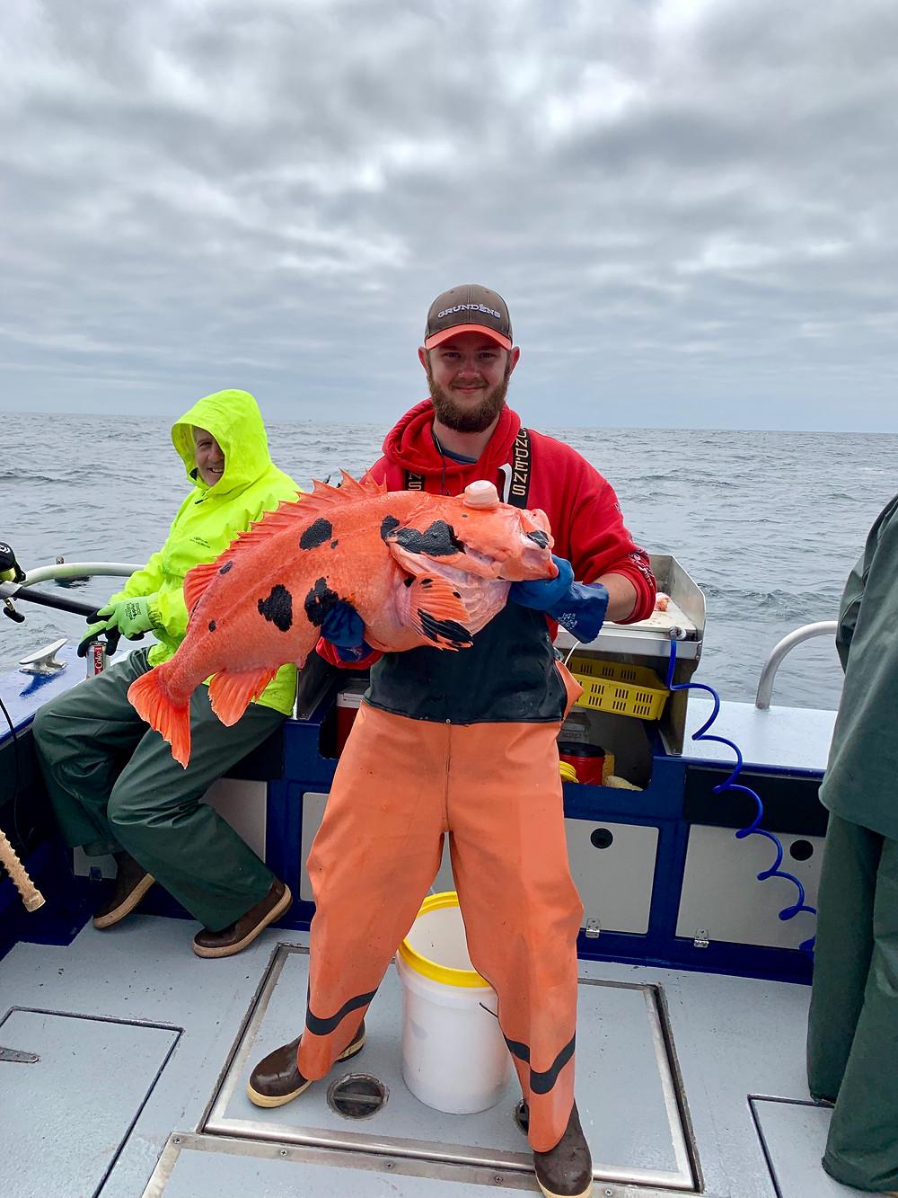 Shortraker rockfish Sitka, AK