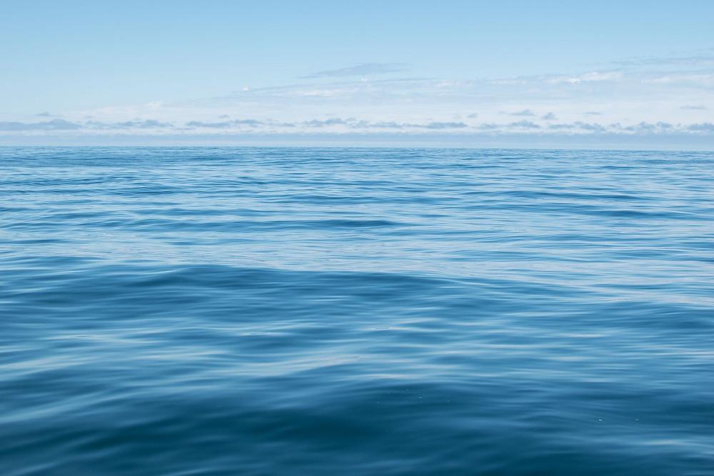 all inclusive fishing trips sitka, alaska