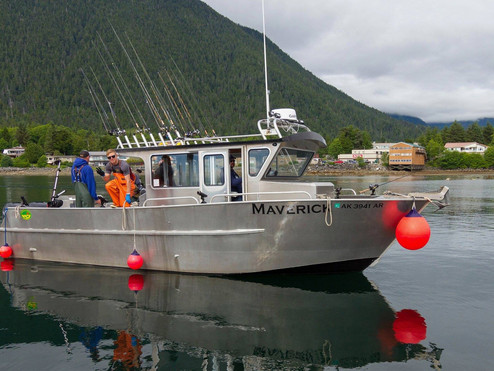 Why You Should Consider Fishing In Alaska