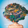 Coastlien Chiropractic & Brainstorm Rehabilitation