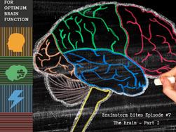 Brainstorm Rehabilitation