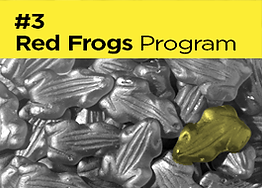 red frogs.png