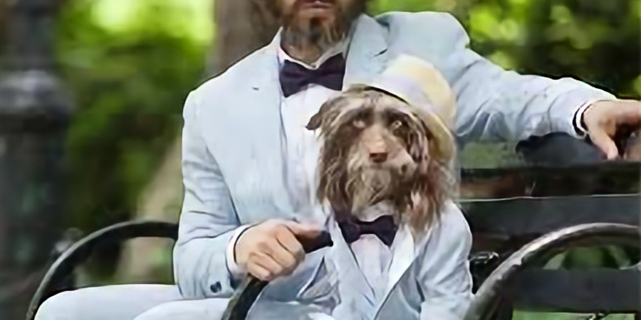 Owner/Pet Look-A-Like 2021