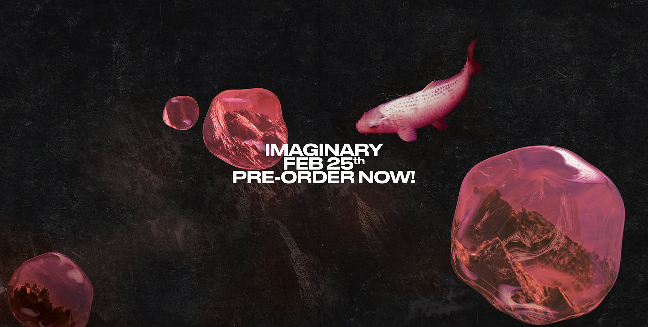 Imaginary Preorder now Website.jpg
