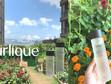 【天然護膚的熱愛】Jurlique全新升級版活肌水精華  鎖水保濕