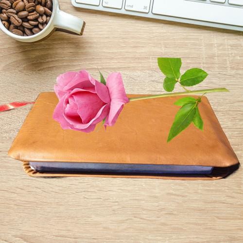 A nice tan Bible
