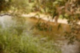 Bob_aug_2019 - 15.png