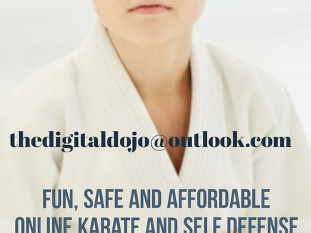 The Digital Dojo - learn karate in the comfort of your home