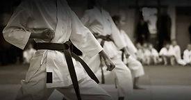 learn-karate-lessons-online.jpg.jpg