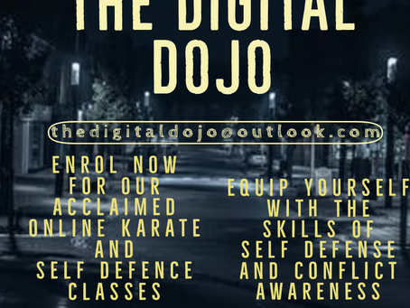 The Digital Dojo - acclaimed online tuition