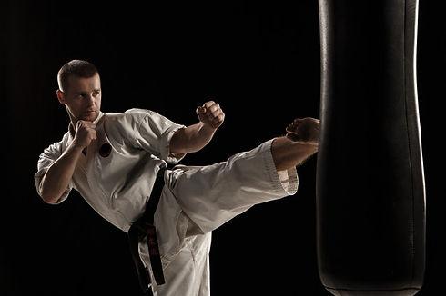 karate-round-kick-punching-bag_155003-28