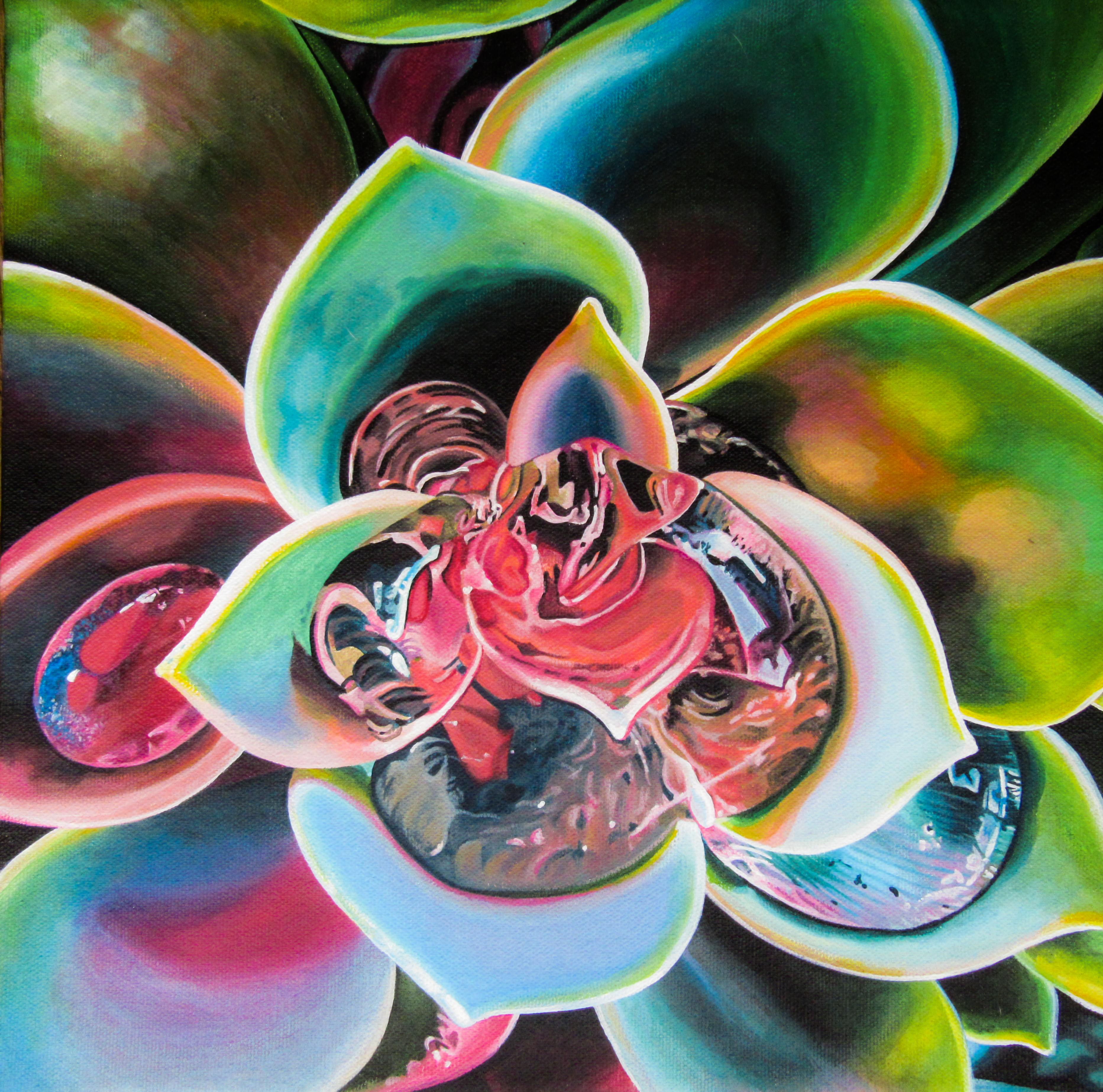 Succulent Dreams Print