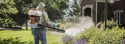 Mosquito Control in St. Augustine