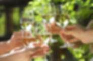 People Holding Glasses Of White Wine Mak